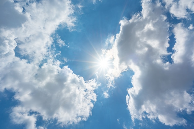 The sun shines bright in the daytime in summer