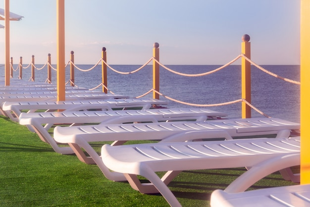 Sunbeds on the grass by the sea