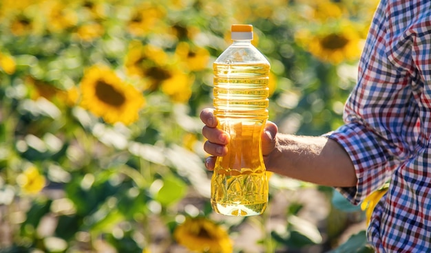 Sunflower oil in the hands of a male farmer on the field. selective focus.
