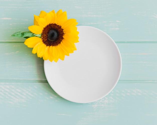 접시에 해바라기