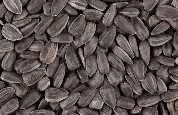 해바라기 씨앗 배경입니다. 튀긴 해바라기 씨앗 더미입니다.