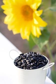 Sunflower seeds in bucket and sunflower