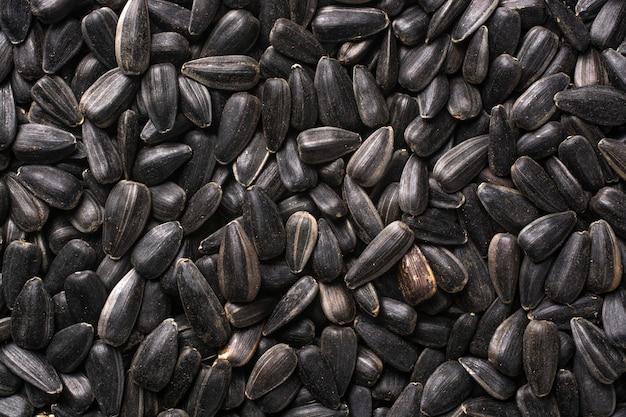 Семена подсолнечника крупным планом