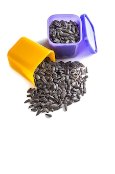 Sunflower seeds in container on white background. helianthus annuus.