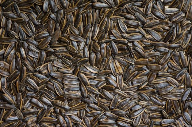 Фон текстуры семян подсолнечника