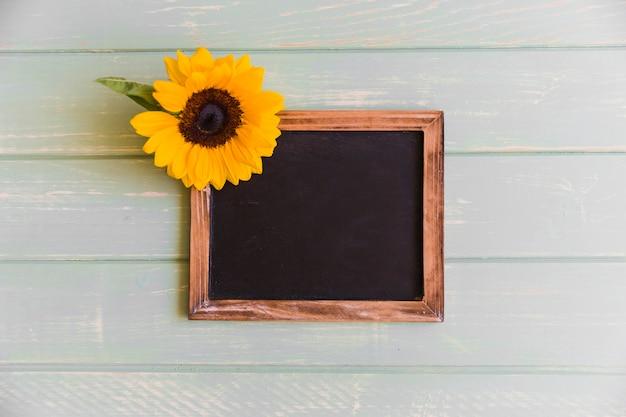 Sunflower on slate