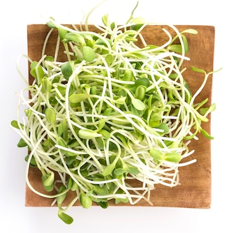 Sunflower Sprouts