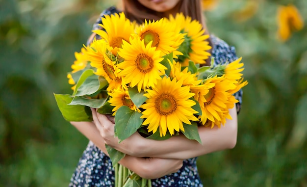 Sunflower in woman's hands on sunflower field.