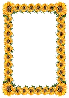 Подсолнухи акварельная живопись прямоугольная рамка осенняя рамка праздник урожая благодарения