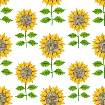 Sunflowers watercolor seamless pattern on a white background