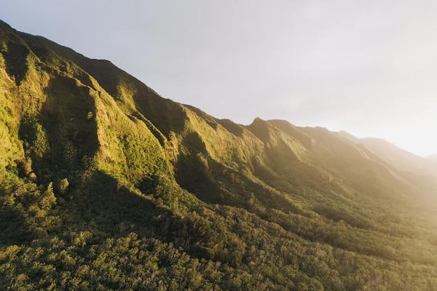 緑の山に日が昇る