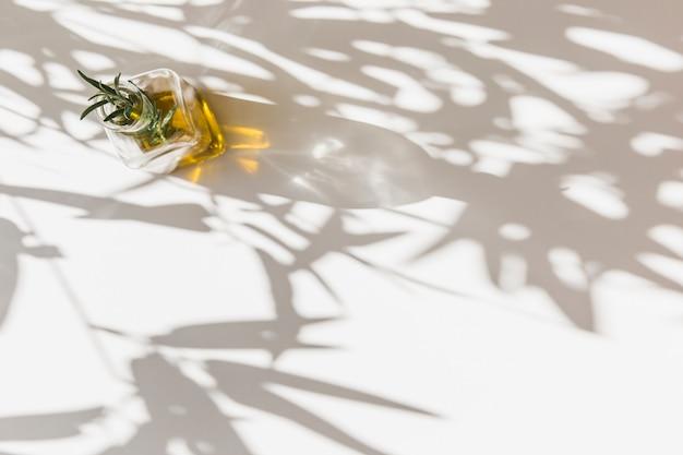 Sunlight on rosemary herbs in olive oil bottle on white background