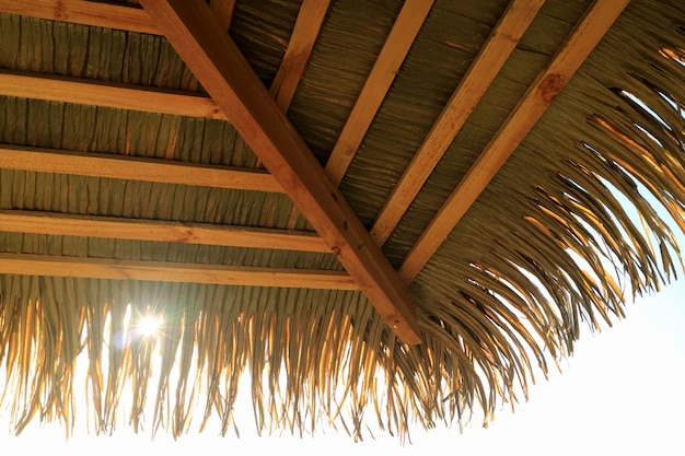 Sunlight shining through coconut palm tree leaf pavilion roof, easter island, chile