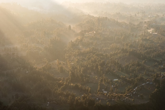 Above of sunlight on tropical forest with fog at morning