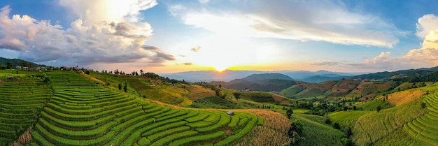 Sunlight at twilight of rice farm landscape. pa bong piang terraced rice fields, mae chaem, chiang mai thailand