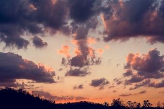 Sunlight with Cloudy Blue Sky Beauytiful Scene