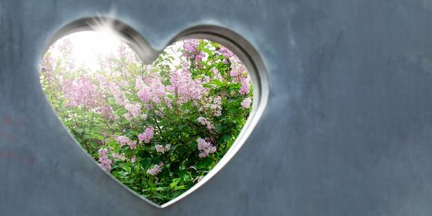 太陽に照らされたライラックの茂みは、灰色のコンクリートの壁に切り込まれたハートを通して見えます。結婚式やバレンタインデーのコンセプトです。