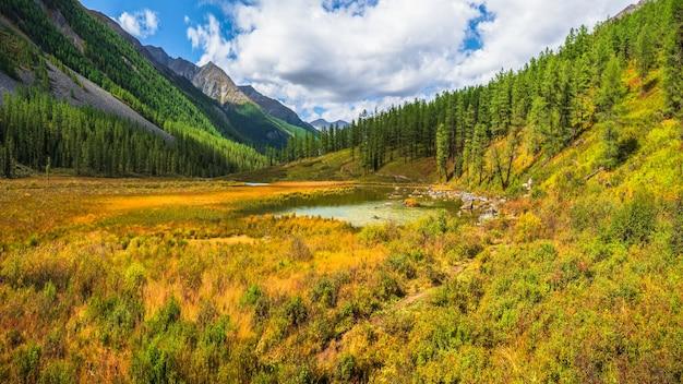 화창한 가을 늪. 산 호수의 늪지 역류. 고원의 노란색 대기 자연 배경입니다.