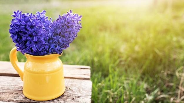 Солнечная концепция весеннего или летнего садоводства с яркими фиолетовыми сине-фиолетовыми цветами гиацинта в желтом кувшине или вазе на старом деревянном столе в саду с зеленой травой. размытый фон