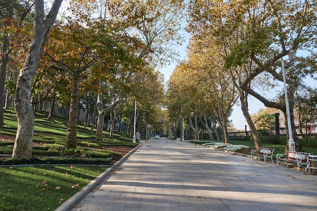 A sunny day in the autumn park of istanbul, turkey