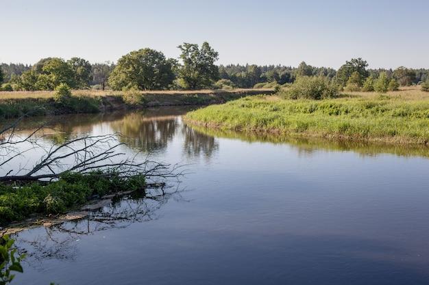 Солнечный день на спокойной реке летом