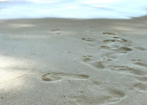 화창한 날 해변과 모래에 발자국