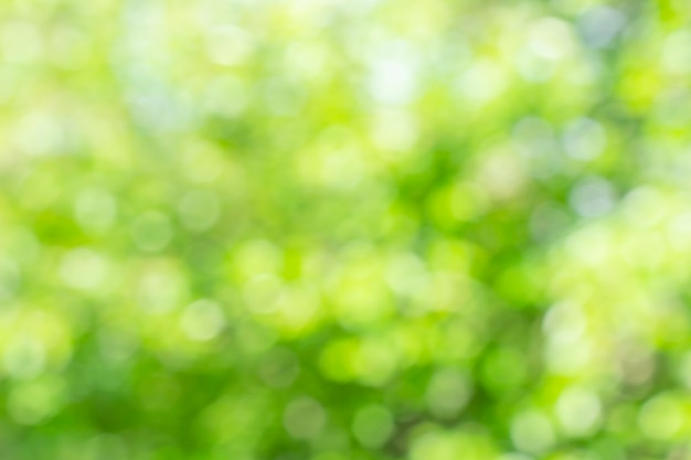 日当たりの良い多重緑の自然の背景、あなたのデザインの抽象的なボケ効果es要素。