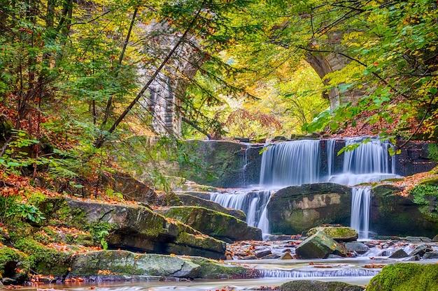 晴れた森と秋の日。小さな川と滝のいくつかの自然の急流