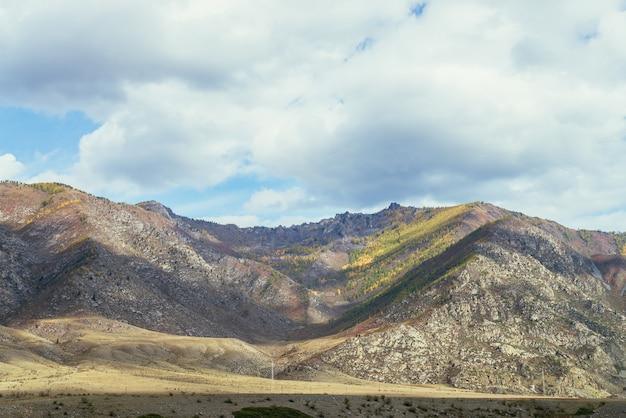曇り空の下の山腹に黄色の木と太陽に照らされた金の大きな山と日当たりの良い雑多な秋の風景。秋の色の黄金の日差しの中で美しい高山と素晴らしいアルプスの風景