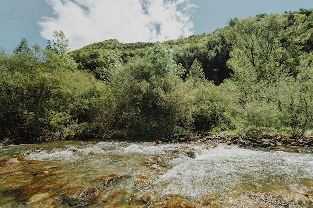 Sunny rocky landscape with vegetation