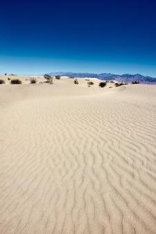 Paesaggio soleggiato delle dune di sabbia piatte mesquite nel parco nazionale della valle della morte, california - usa