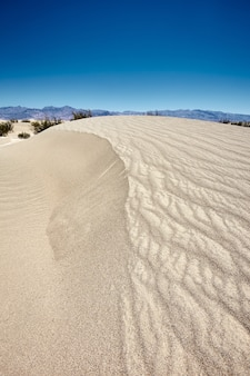 Sunny scenery of the mesquite flat sand dunes in death valley national park, california - usa