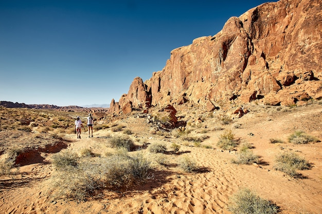 Sunny scenery of the valley of fire state park in nevada, usa