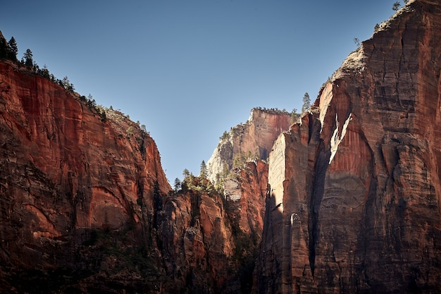 Sunny scenery of the zion national park located in utah, usa