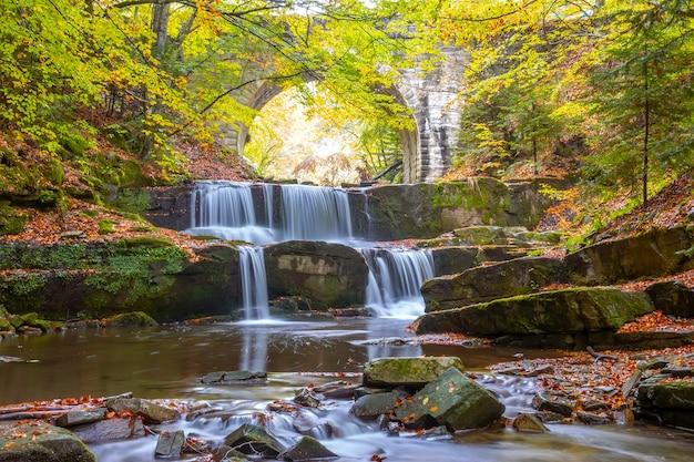 숲에서 화창한 여름 날. 오래된 다리의 거대한 석조 아치. 여러 자연 폭포 급류가있는 작은 강