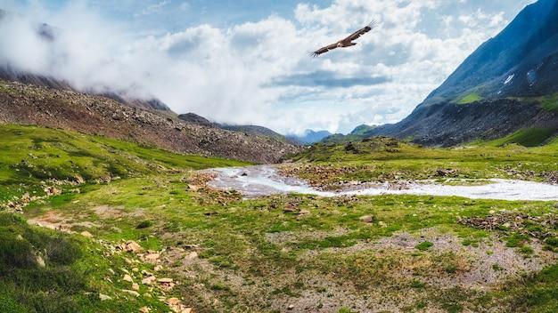 日当たりの良い湿地の山の谷、緑豊かな山々に囲まれた峡谷の小川のある劇的な風景。アルタイ山脈。