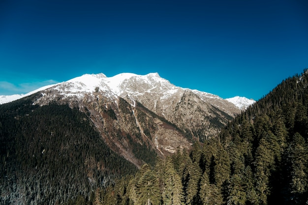 山の晴れた天気。ロッキー山脈の山頂の美しい風景。