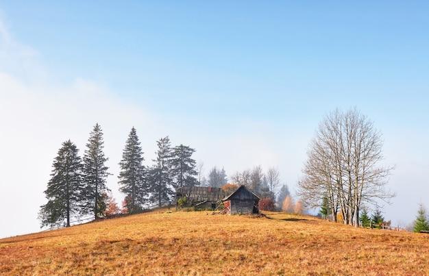 산 숲의 언덕에 오래 된 목조 주택으로 높은 산 안개 계곡 위의 일출.