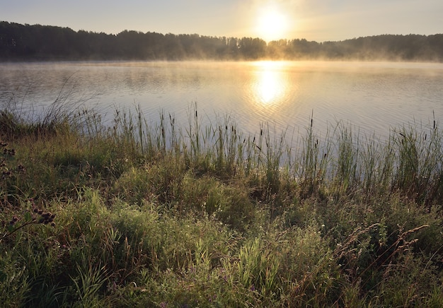 Sunrise over the forest lake in the morning