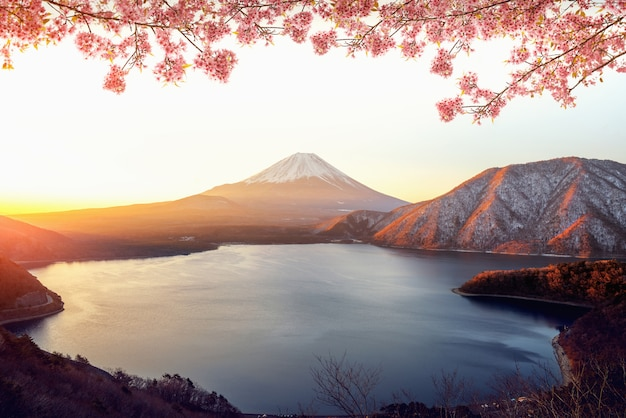 Sunrise over fuji san mountain and pink sakura