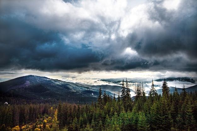 カルパティア山脈の美しい森の日の出