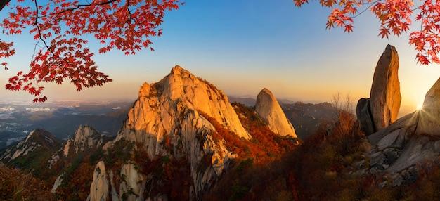 Восход солнца осенью в национальном парке в сеуле, южная корея