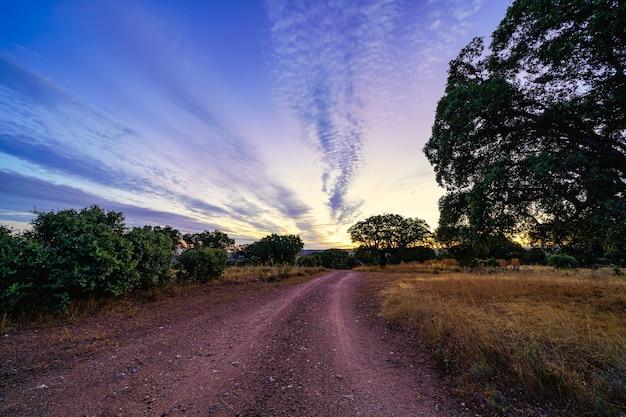 Восход солнца в поле с грунтовой дорогой, указывающей на горизонт.