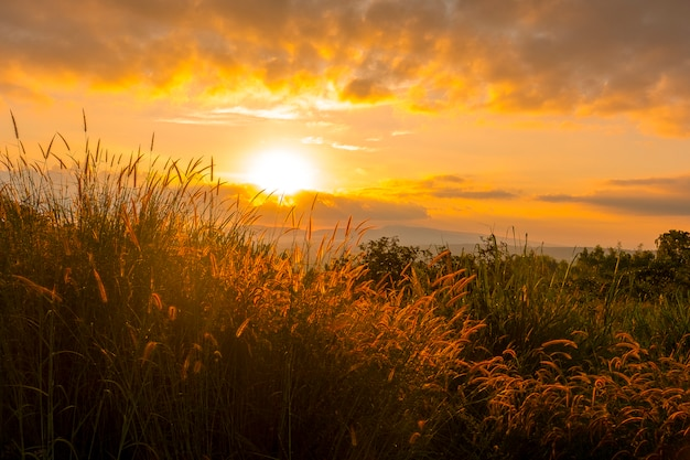 Sunrise on the mountain with grass fields on the front