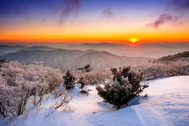 덕유산 산의 일출은 한국, 겨울에 눈으로 덮여