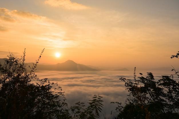霧の中の日の出。