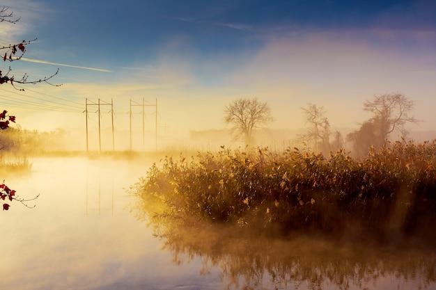 Восход солнца над рекой утро туман лес река Premium Фотографии