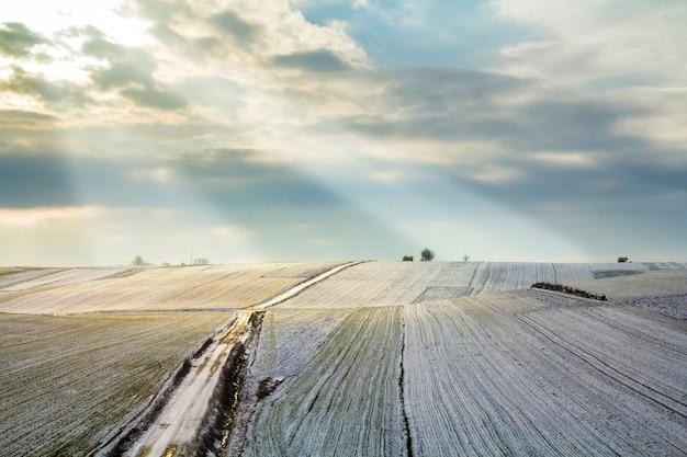 冬の緑のフィールドの日の出。田園風景。
