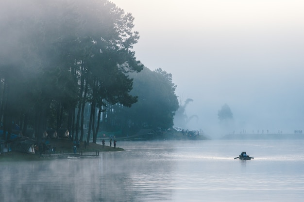 Sunrise on pine forest with foggy at pang oung, mae hong son, thailand