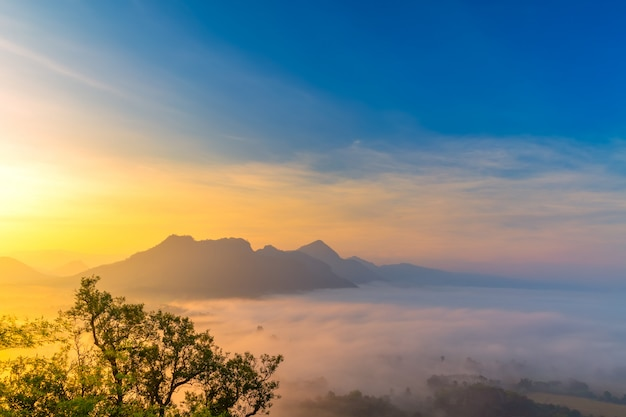 Sunrise with the mist beautiful landscape for relaxing in thailand